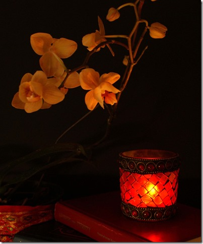 www.CherieShanti.com - Lovers Amis