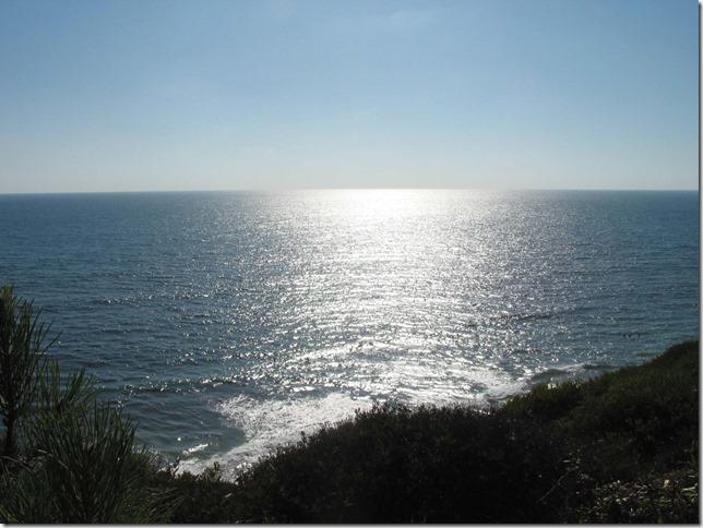 www.CherieShanti.com - Swami's Beach