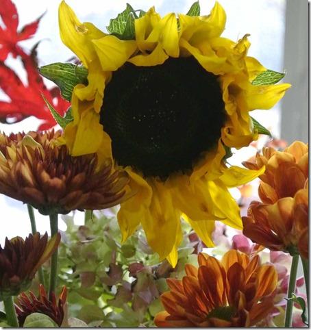 110813 B'day Flowers IG_DSC1049