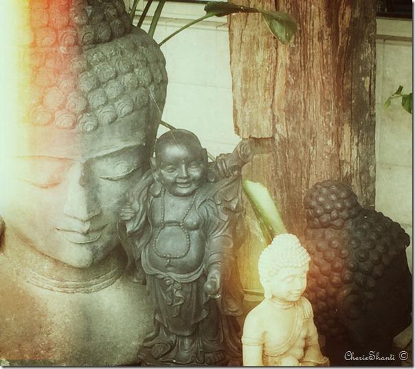 CherieShanti.com - Buddhas