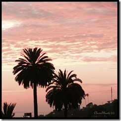 CherieShanti - Encinitas - Sunset