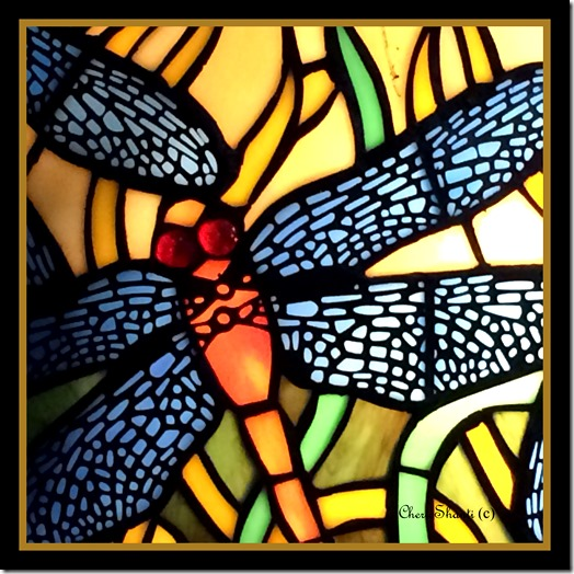 CherieShanti - Dragonfly