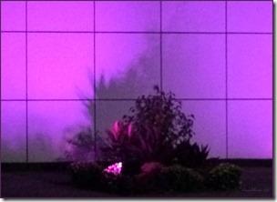 CherieShanti - Paisley Park Night