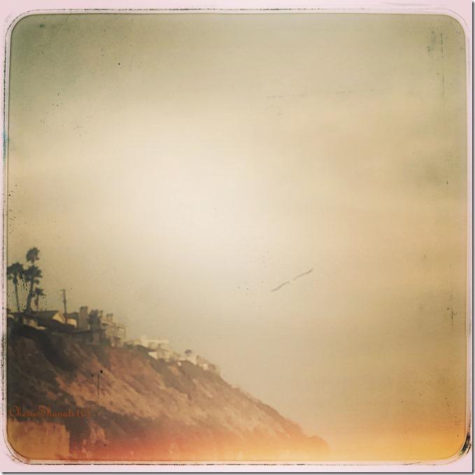 CherieShanti.com - Wings of Light