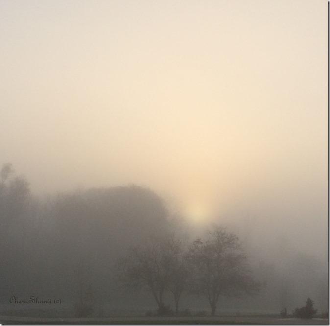 CherieShanti - Transcend the Veil